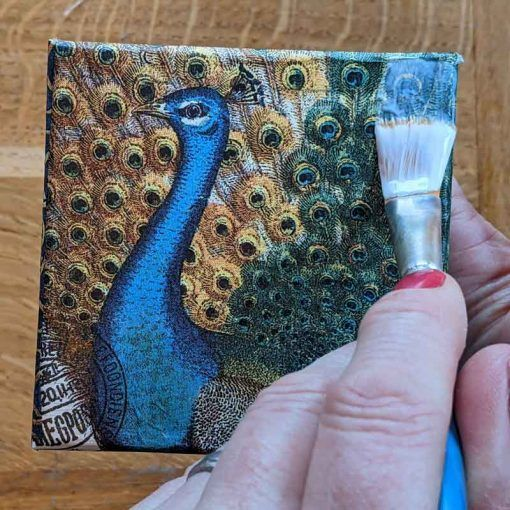 Paintbrush-varnishing-peacock-napkin-Decoupage-kit